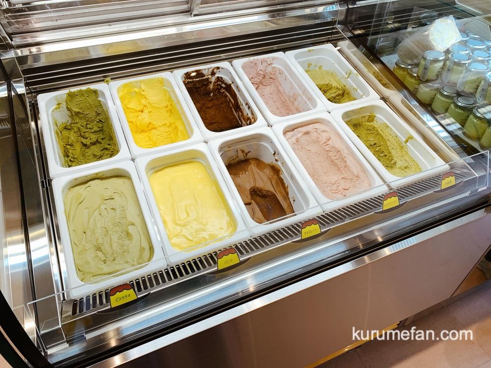 ぷりんのススメ ショーケース内のアイスクリーム