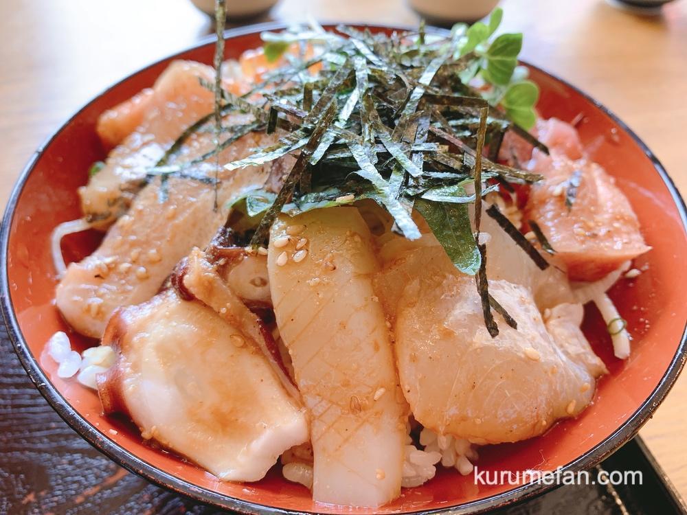 魚国 海鮮丼や定食がボリューム満点!安くて美味いお店【久留米市山本町豊田】