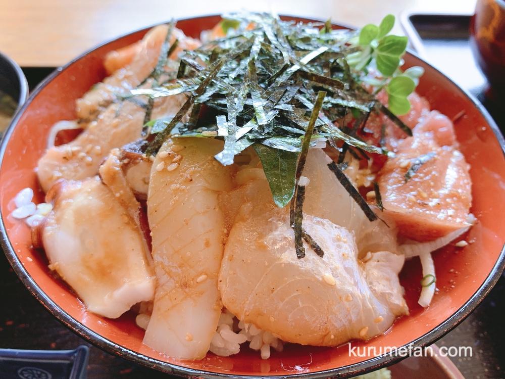 魚国(うおくに)久留米市 ボリューム満点 美味しい「海鮮丼」