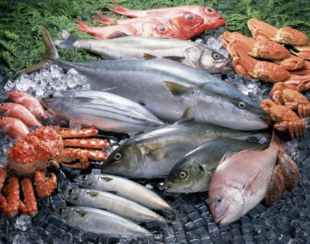 清水水産 久留米東櫛原店 鮮度抜群の魚屋が7月に業務スーパー内にオープン