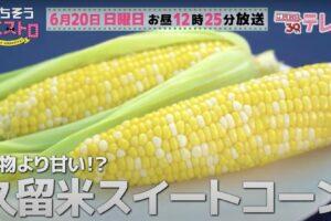 ごちそうマエストロ 久留米市「堀農園」果物より甘い!?極上のスイートコーン