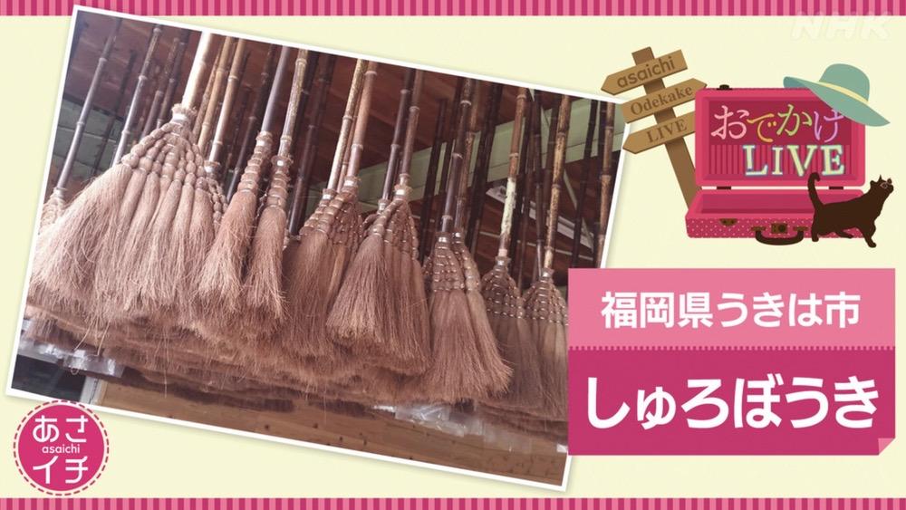 NHKあさイチ 福岡県うきは市 究極のエコ掃除しゅろぼうきを放送【6/29】