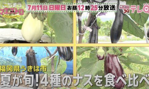 ごちそうマエストロ うきは市「しゅうたの畑」4種類のナスを放送【7/11】