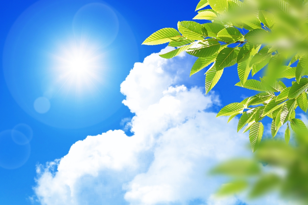 福岡県に熱中症警戒アラート 久留米市 最高気温37度の予報【熱中症注意】