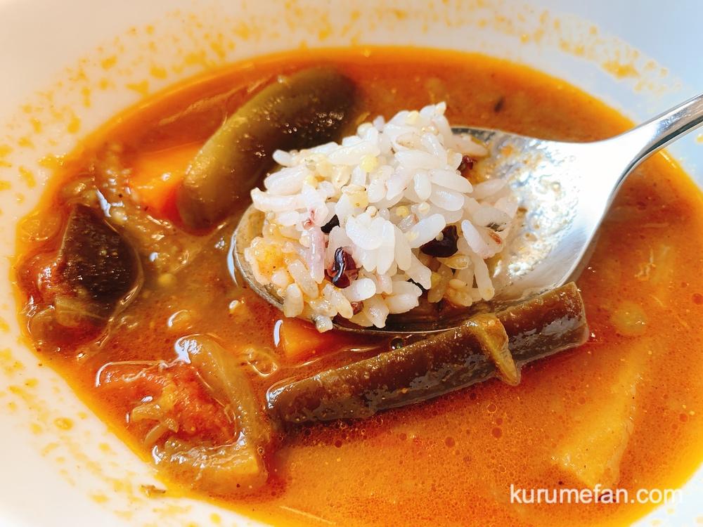 穀物屋 レンズ豆と夏野菜のスープカレーセット 二十八穀米