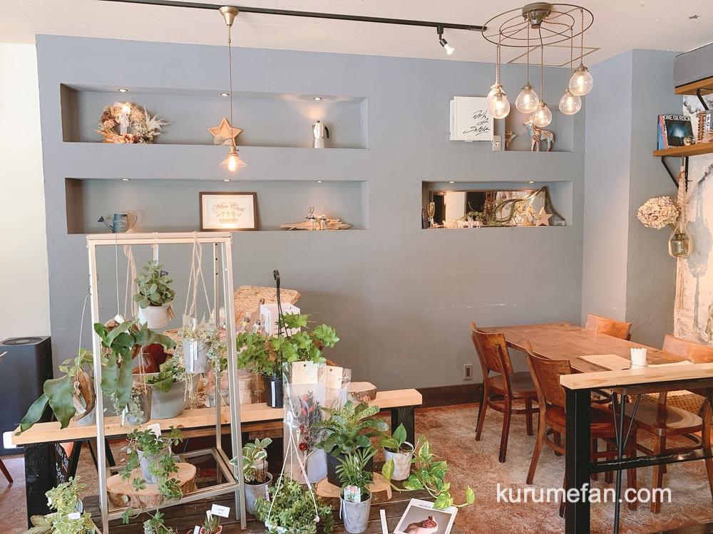 ニコ カフェ ナナオ(Nico Cafe NANAO)雰囲気の良いおしゃれな店内