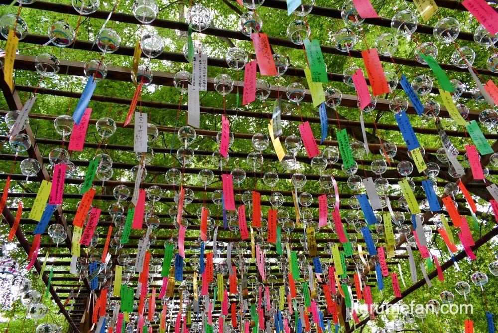 小郡市 如意輪寺(カエル寺)数千個の風鈴