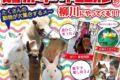 阿蘇カドリー・ドミニオンが柳川に!子どもから大人まで楽しめる野外イベント