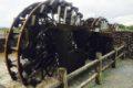 山田堰通水式 朝倉市の夏の風物詩 揚水車群が稼働 日本最古の実働する水車