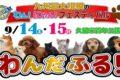 わんだふる 九州最大級のペットフェスが久留米百年公園にて開催!?