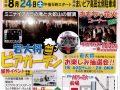 みやまおもちゃ花火フェスタ ミニナイヤガラの滝と大蛇山の競演!