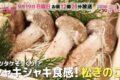 ごちそうマエストロ 福岡県久留米市の「松きのこ」秋の新味覚【9/19】